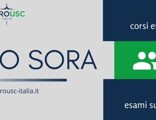 CORSO SULLA METODOLOGIA SORA: UN BILANCIO POSITIVO PER EUROUSC ITALIA